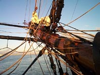 Visit Cook's replica ship
